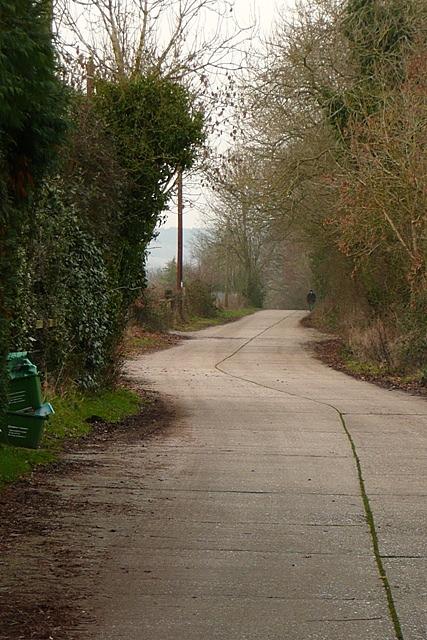 Road to Limberlost Farm