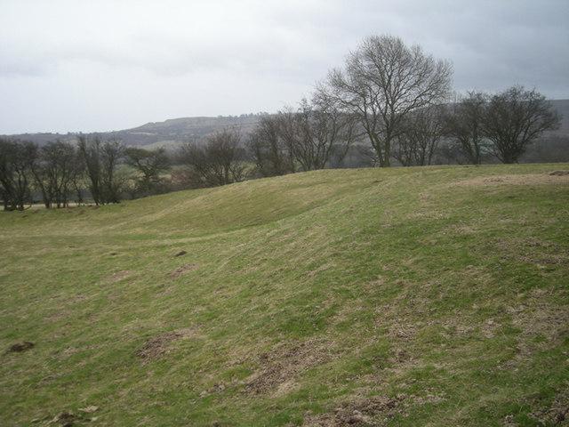 The remains of Egerton Medieval Village