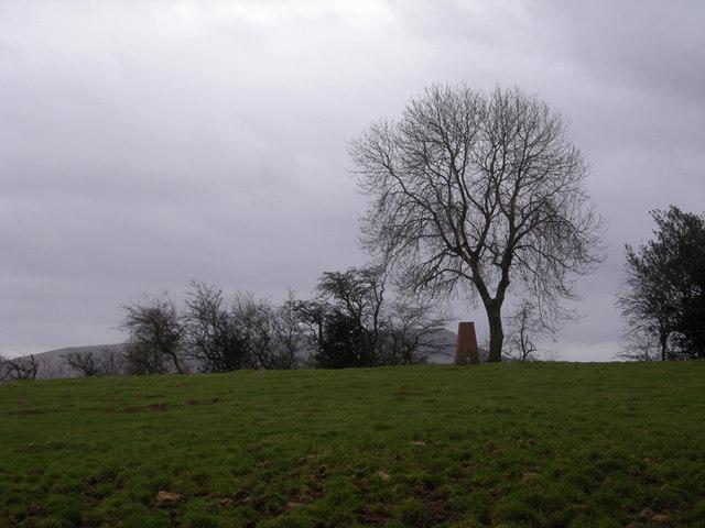Trig point near Besom Farm