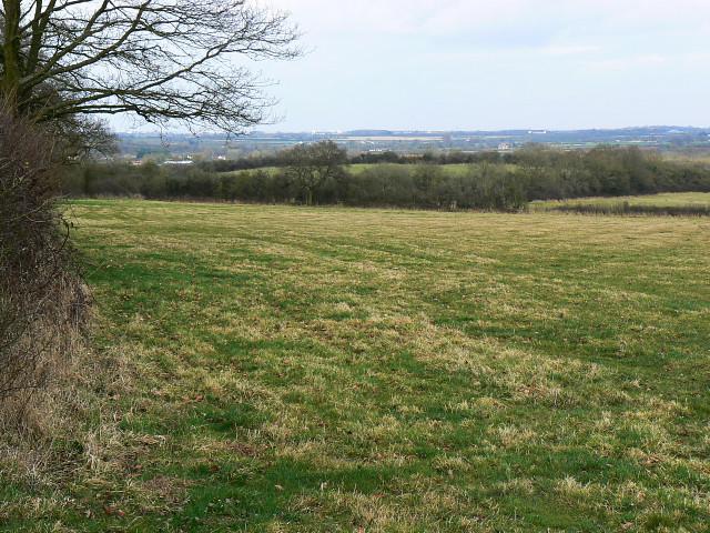 Pasture, east of Tockenham, north of Bushton
