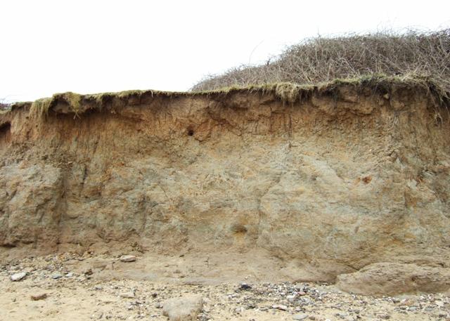 Cliffs at the Naze