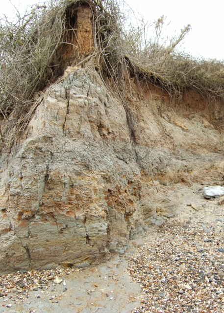 Detail of cliffs at the Naze