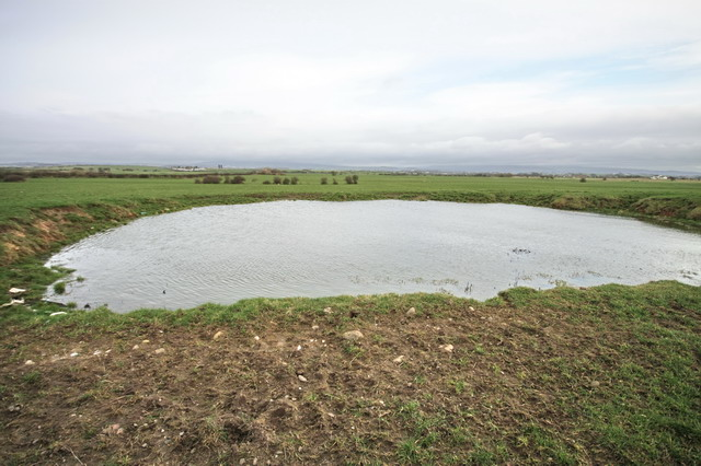 Small Pond near Crook Farm