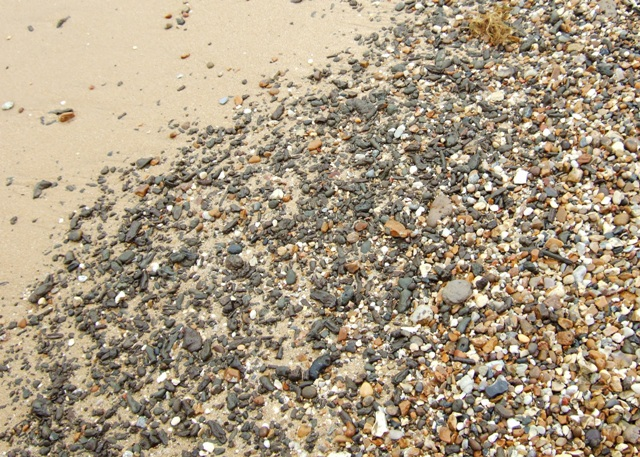 Detail of beach material, The Naze