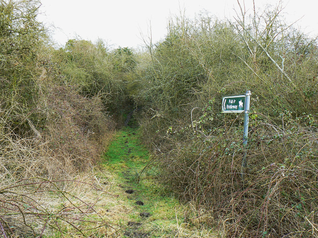 Bridleway entrance, north of Bushton