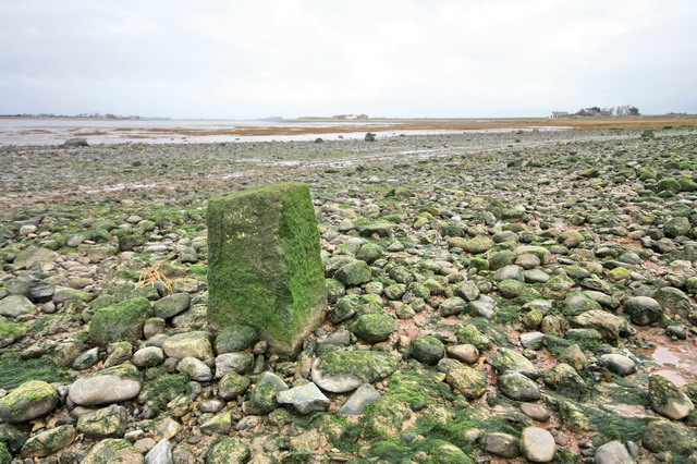 Boundary Stone in Estuary