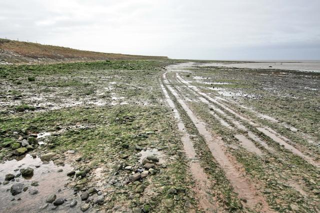 Plover Scar, Lune Estuary