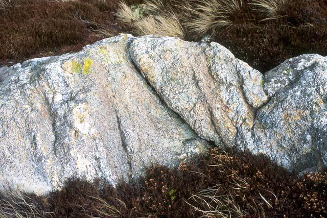 Rock and heather, Mynydd y Gadair.