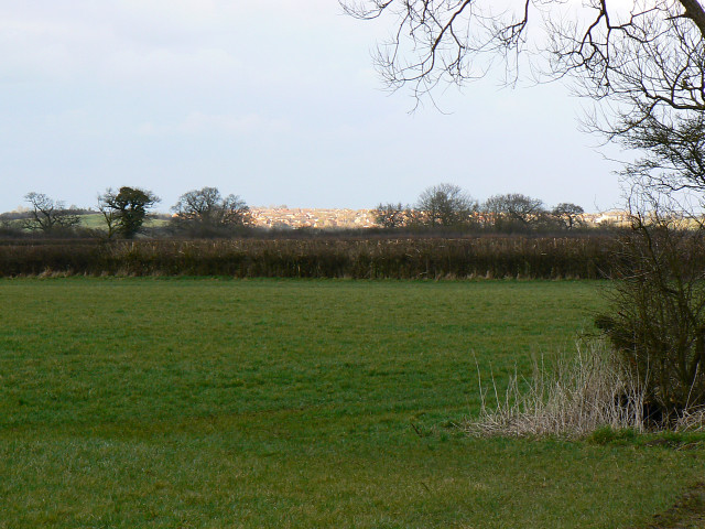 Farmland,The Barton