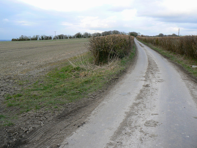 The road to Broad Hinton
