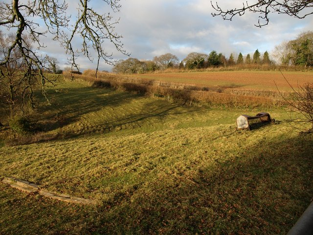 Field by Old Widdicombe Lane