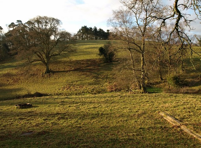 Valley by Buttshill Copse