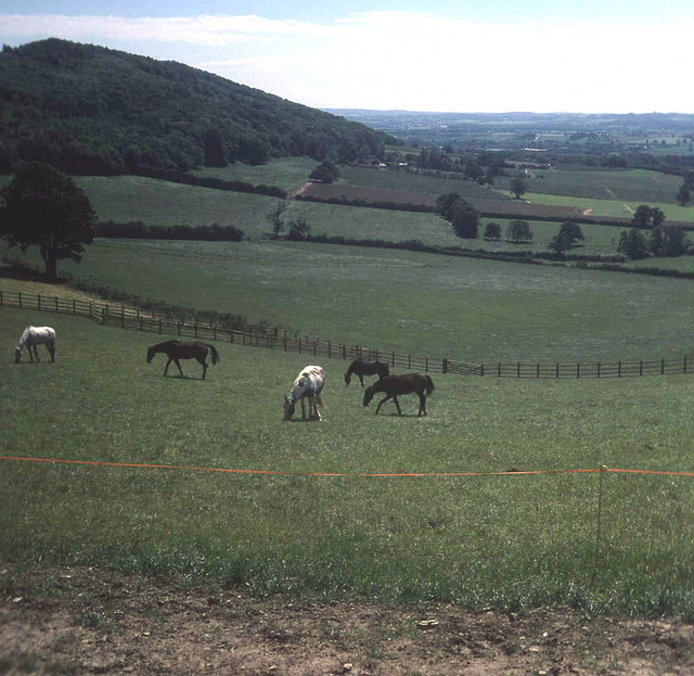 Farmland near Wellington Heath