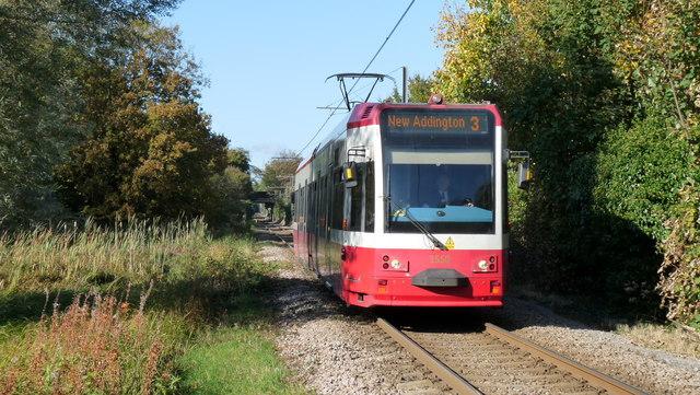 Tram Near Phipps Bridge