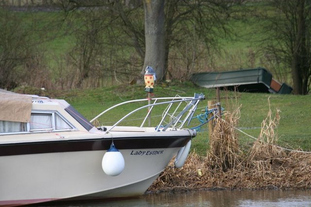Owl on the boat