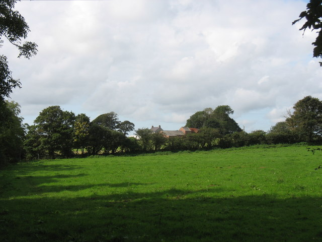 View across pasture land towards Tan-y-felin farmhouse