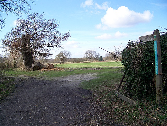 Avon Valley Path, Bisterne