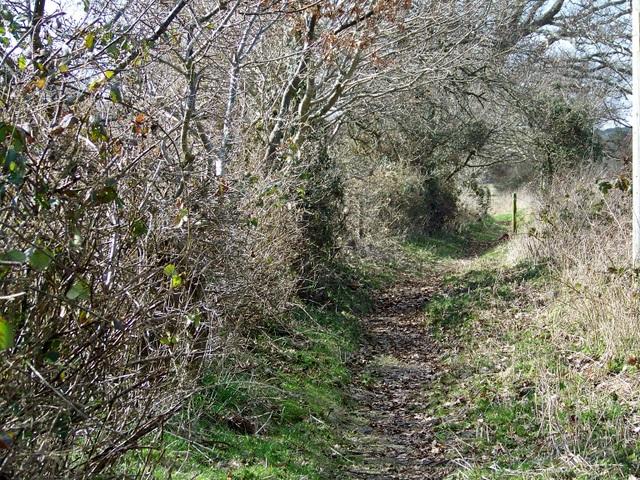 Avon Valley Path, Bisterne