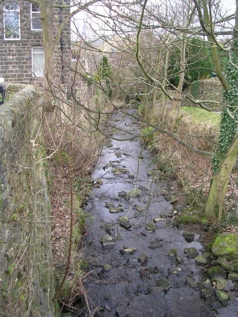 Stream - Main Street