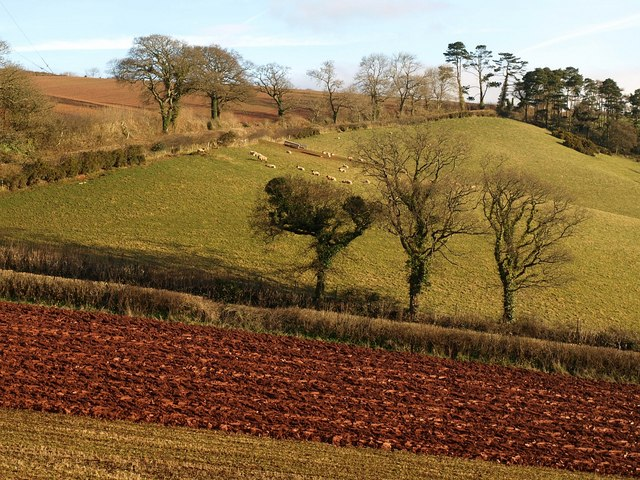 Partly ploughed field by Higher Ramshill Lane (3)