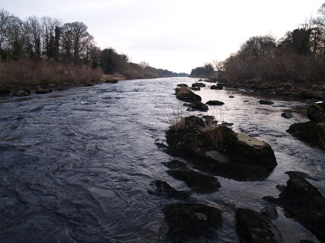 The River Tyne from just downstream of Bywell Bridge