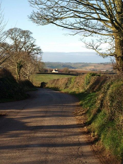 Waddeton Road at Great Tree