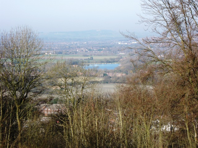 A gap in the trees reveals Weston Turville Reservoir