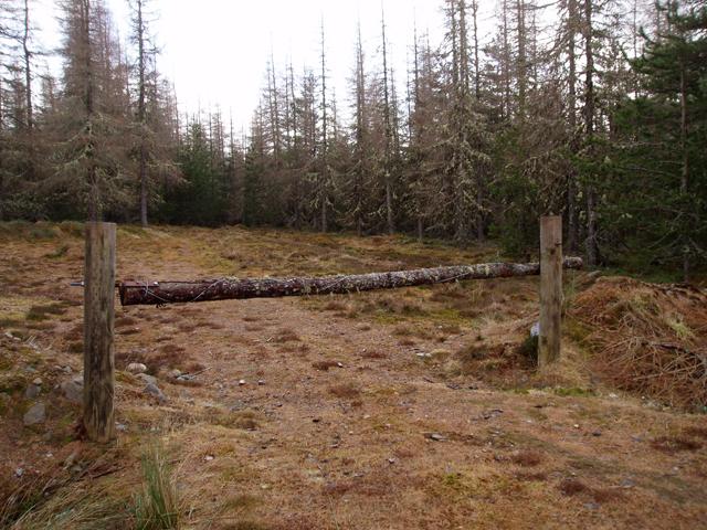 Entrance to Cragganmore Wood