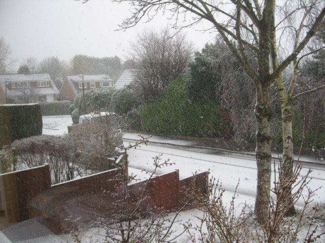 Snow in Sutherland Avenue