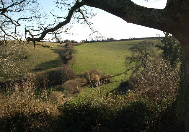 Fields below Kennels Road from Combe Lane