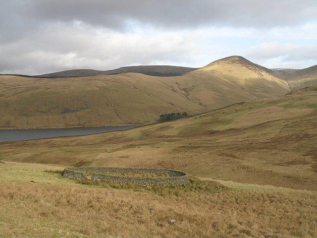 Sheep fank below Macrule Hill