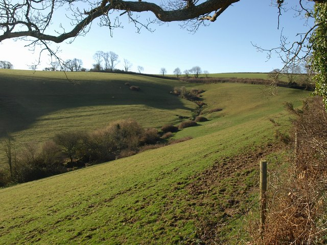 Head of valley by Combe Lane