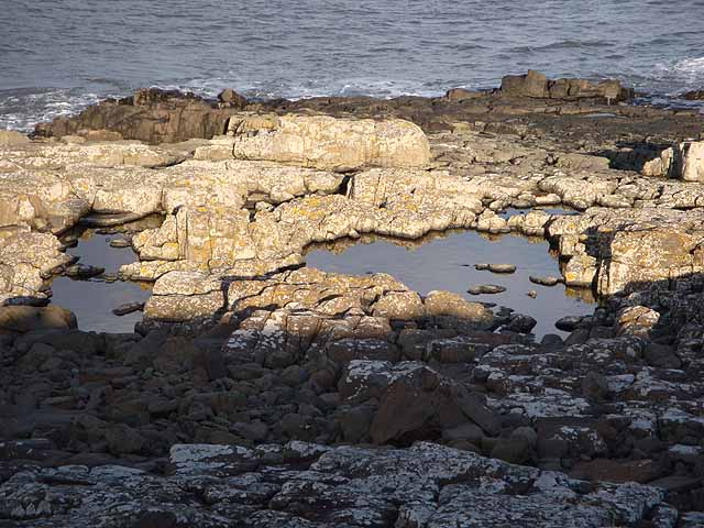 Rock pools north of Cullernose Point