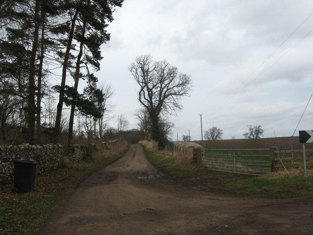 Track to Kimmerghame Heugh