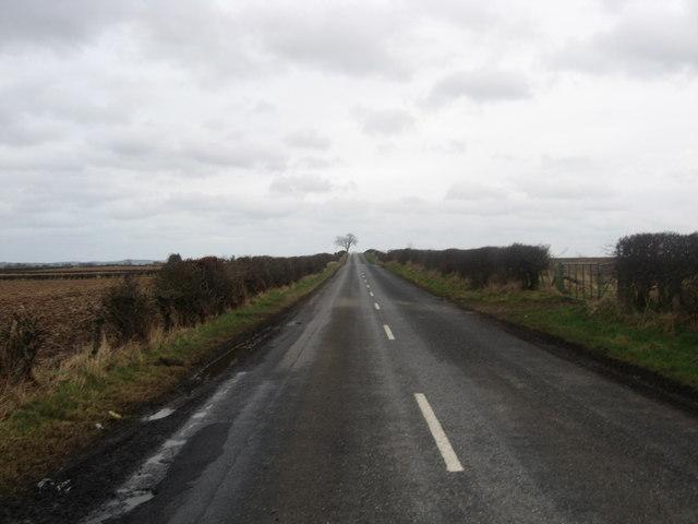 Minor road in Berwickshire