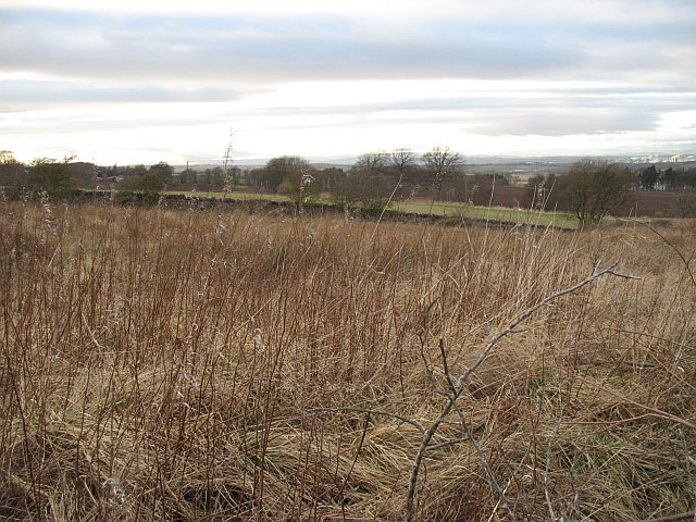 Unused ground by Beecraigs