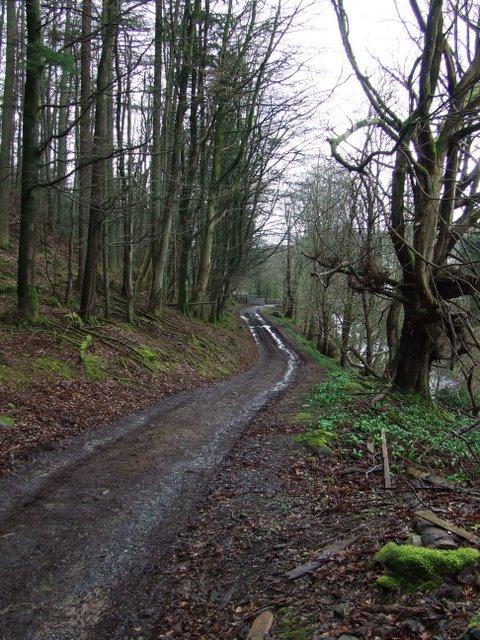 Track at Bankfoot