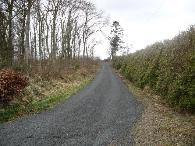 Track to Blackadder Mains