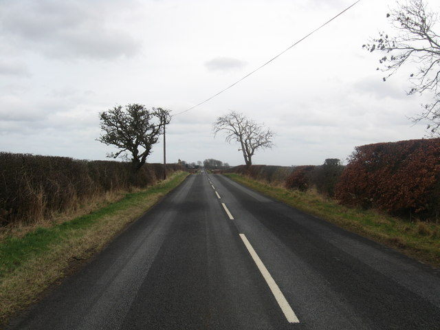 Country road near Blackadder Mains