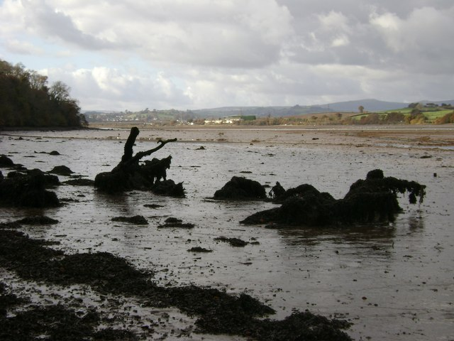 River Teign estuary, low tide