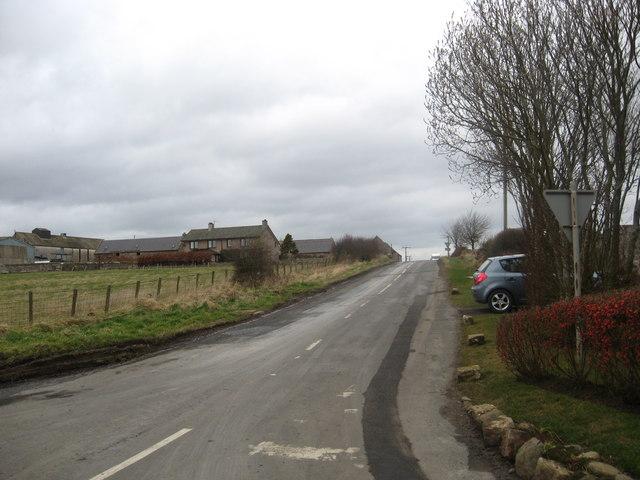 Looking towards Hutton Mains Farm