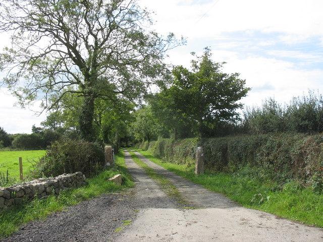 Driveway to Ponc Fadog Farm