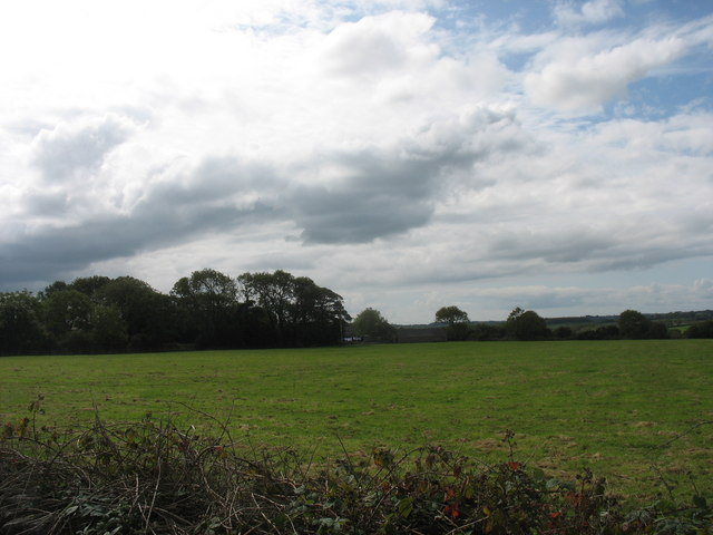 Grazing land north of Bonc Fadog farmhouse