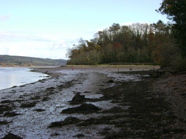 Netherton Point, Teign estuary