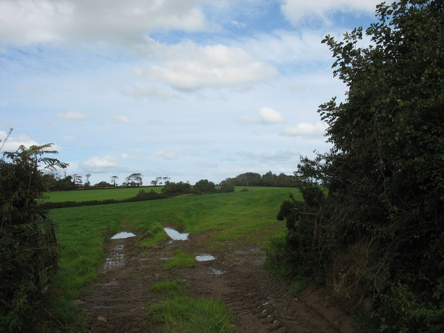 Farmland east of Afon Erddreiniog