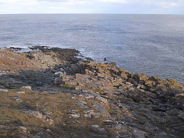 Cullernose Point
