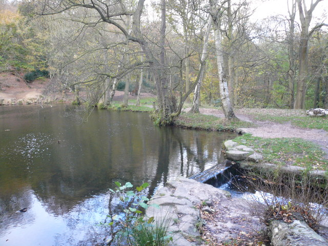 Shining Cliff Woods - Pool and Footpath