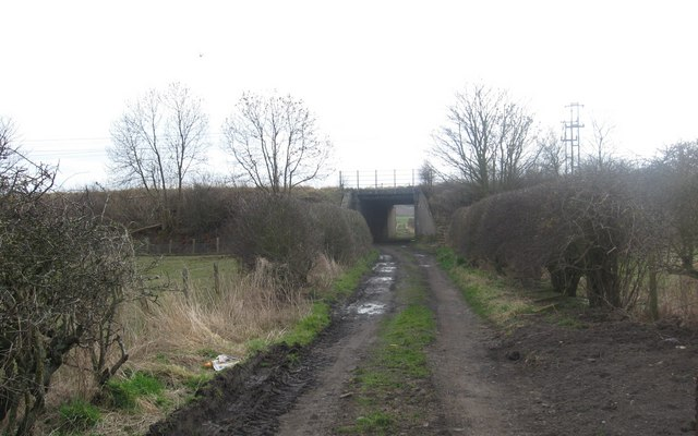 Track leading to Newmains