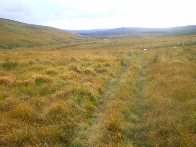 Path at Kielderhead