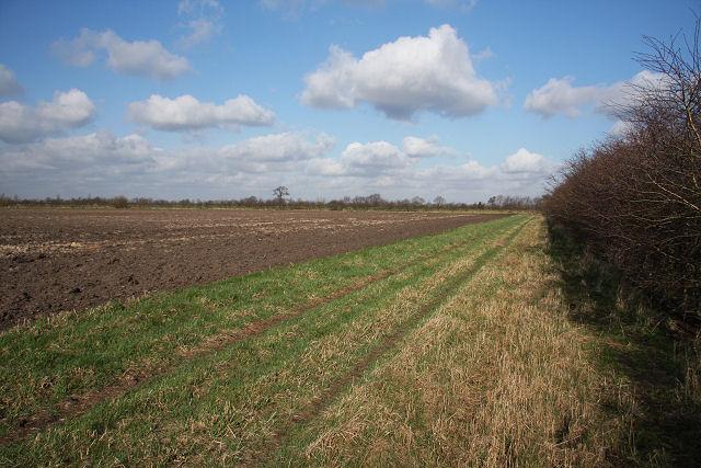 Farm track at Block Fen